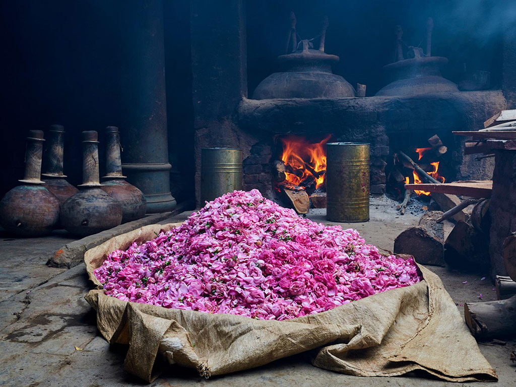 This Ancient Town in Uttar Pradesh is the Perfume Capital of India 6
