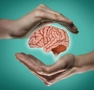 A brain protected by hands